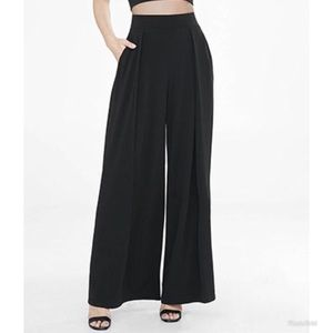 Express Wide Leg Pleated Knit Pant